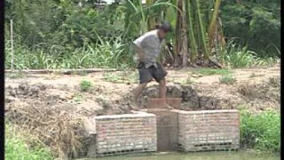 การเลี้ยงปลาดุกบิ๊กอุยในบ่อดิน
