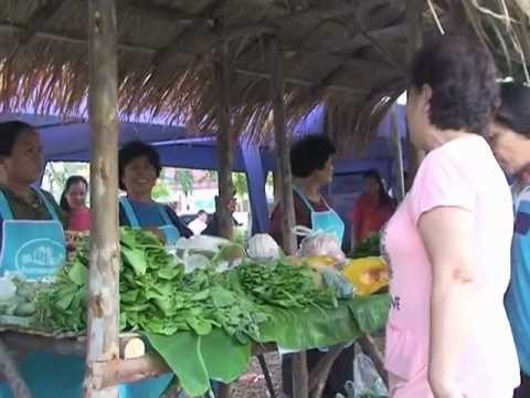 พิธีเปิดงาน ตลาดเกษตรกรรม ผักปลอดสารพิษ อ.เกาะคา จ.ลำปาง