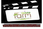 วีดีโอการเกษตร รายการเกษตร วีดีโอความรู้เกี่ยวกับเกษตร